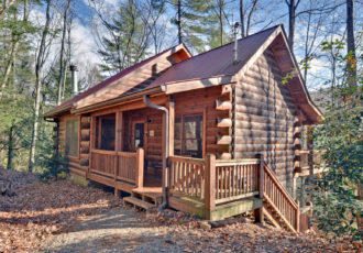 north georgia cabins for rent